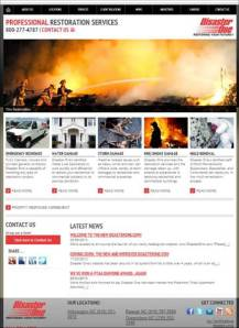 Disaster One website screen shot